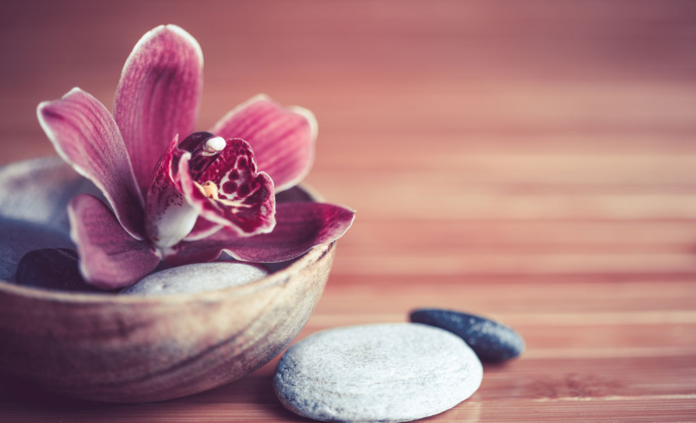 Blüte in Schale
