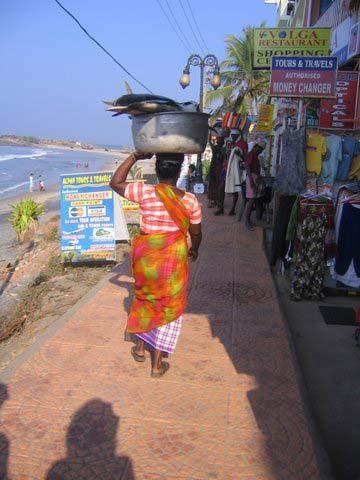 Fischträgerin in Kovalam