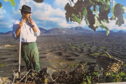 Campesino betrachtet sein Weinfeld die tiefen Pflanzlöcher speichern den wertvollen Tau